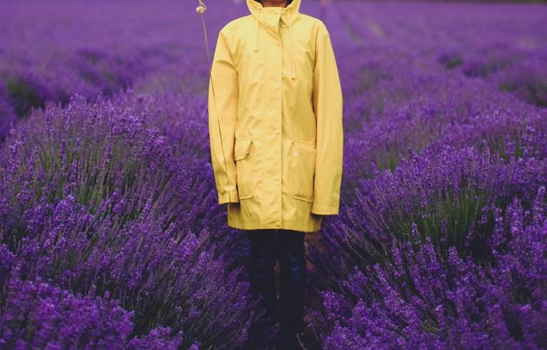 Senfgelb kombinieren mit lila