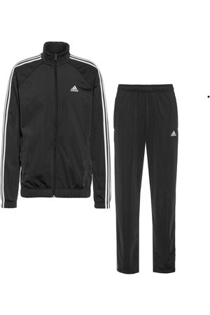 adidas Trainingsanzug Herren in
