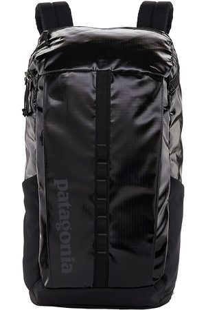 Patagonia Herren Rucksäcke - Black Hole 25L Backpack
