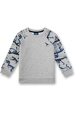 Sanetta Jungen Sweatshirt
