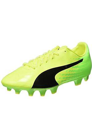 Puma Herren Evospeed 17.4 FG Fußballschuhe, (Safety Yellow Black-Green Gecko 01)