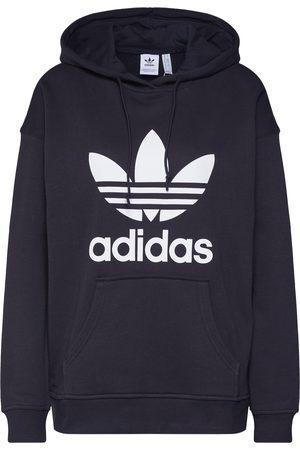 adidas Sweatshirt 'Adicolor Trefoil