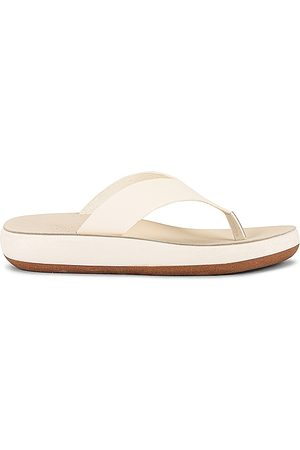 Ancient Greek Sandals Charys Sandal in . Size 37, 38, 39, 40.
