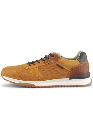 Cox Herren Schnürschuhe - Fashion-Sneaker in , Schnürschuhe für Herren