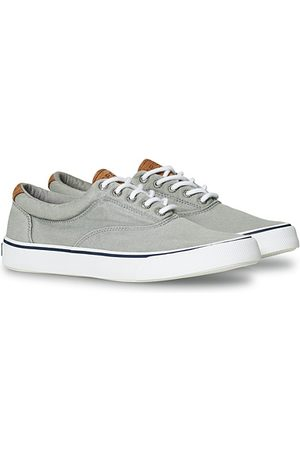 Sperry Herren Sneakers - Striper II Canvas Sneaker Grey