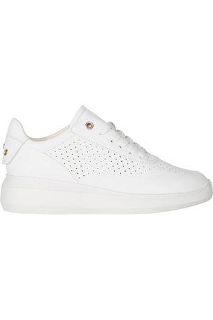 Geox Sneakers , Damen, Größe: 39