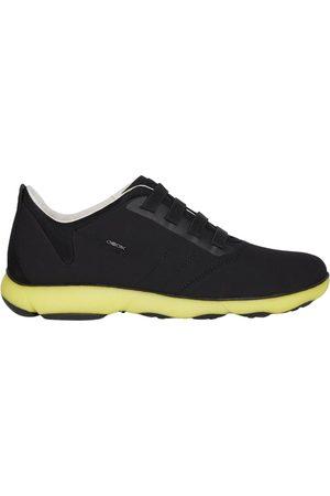 Geox Sneakers , Herren, Größe: 46