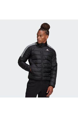 adidas Winterjacke »Essentials Daunenjacke«