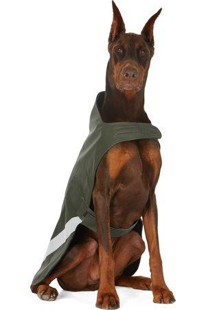 Stutterheim SSENSE Exclusive Khaki Lightweight Dog Raincoat