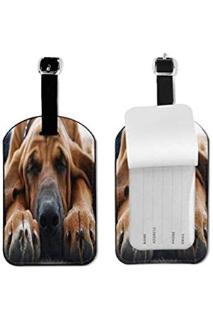 MOONLIT DECAYED Reisetaschen - Gepäckanhänger aus PU-Leder, mit verstellbarer Schlaufe, für Koffer, Namensschild, Namensschilder