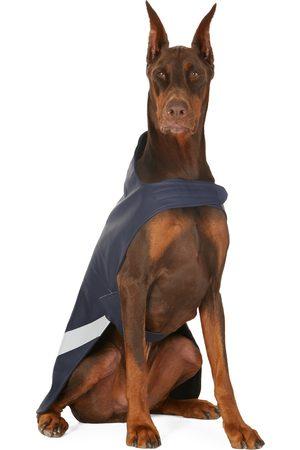 Stutterheim Regenjacken - SSENSE Exclusive Lightweight Dog Raincoat