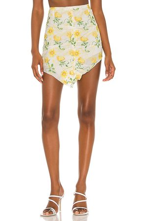 DANIELLE GUIZIO Damen Bedruckte Röcke - Floral Dreams Embroidered Skirts in . Size XS, S, M.