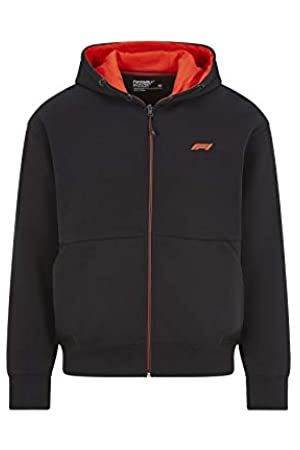 Formula 1 Tech Collection Herren Sweatshirt F1 Small Logo Zip Hooded Sweatshirt