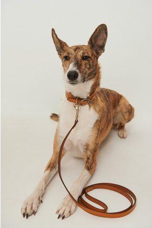 NA-KD Basic Leather Dog Leash - Brown