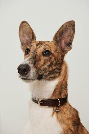 NA-KD Damen Hüte - Basic Leather Dog Collar - Brown